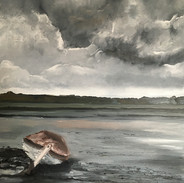 'Every cloud' Blakeney creek