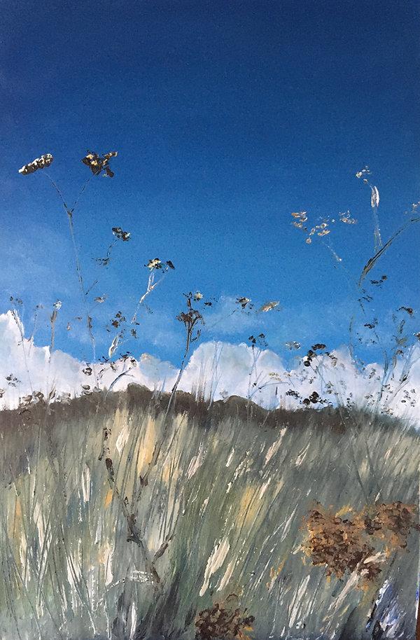 'Light through the grasses' - Morston ma