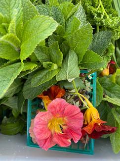edible flowers .jpg