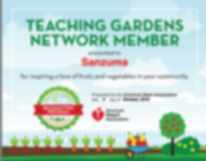 \teaching Network award.png