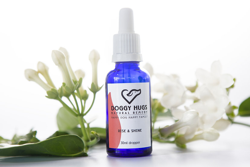 Natural remedies for dogs | Rise and Shine | A natural dog remedy to help cheering up a depressed dog or an old tired dog