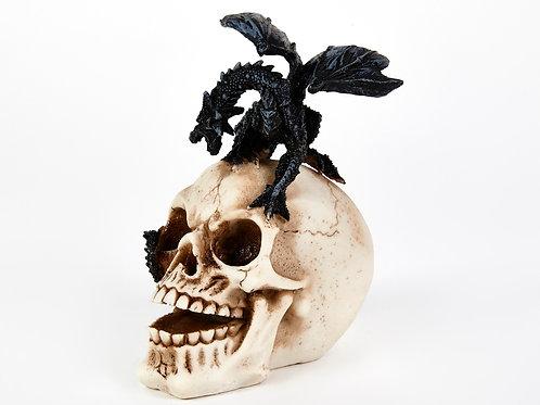 Dragon on Skull Head