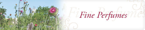 fine_perfumes_header.jpg