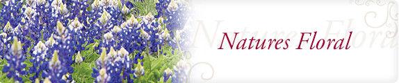 natures_floral_header.jpg