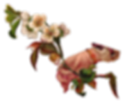 hand_wht_flwr_branch_scrap-png.png