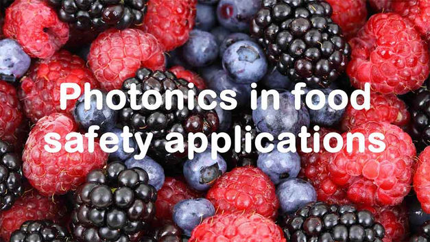 PHOTONICS IN FOOD SAFETY APPLICATIONS