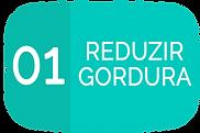 01 REDUZIR GORDURA.png