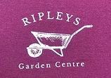 Ripleys.JPG