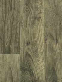 Fossilised Oak