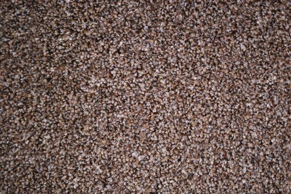 Moor Heathers - Pinecone 830