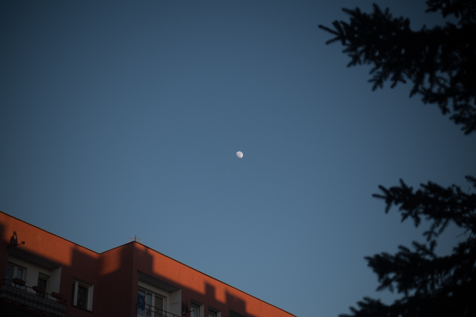 moon_005.jpg