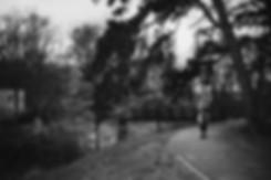 park_004.jpg