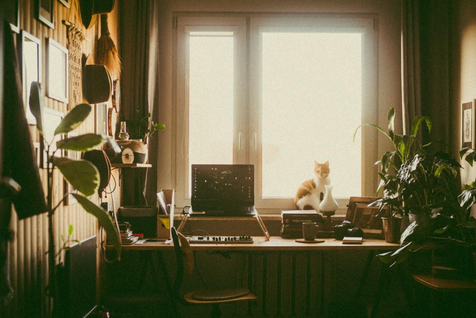 home_001.jpg