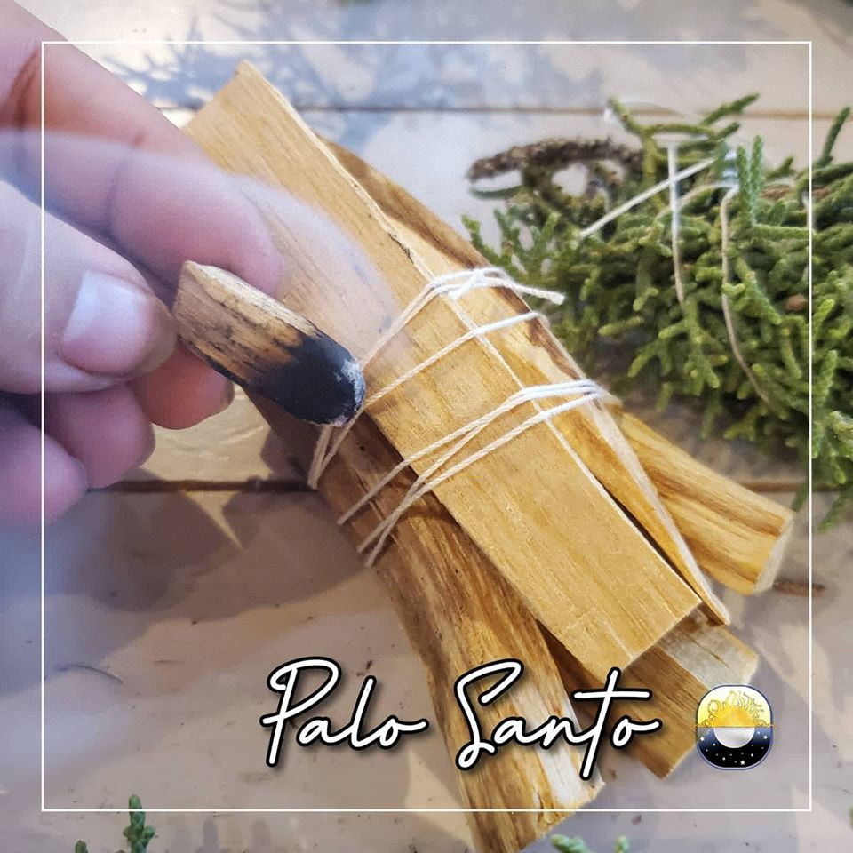 "Palo Santo, ""Holy Wood"" from Ecuador"