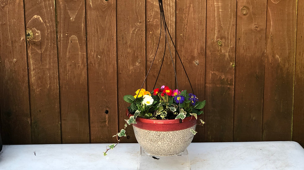 """12"""" Hanging Pot - Crackle look with Red Banding"""