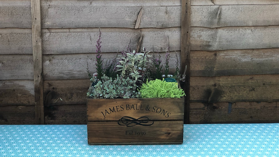 Wooden Crate Planted Container