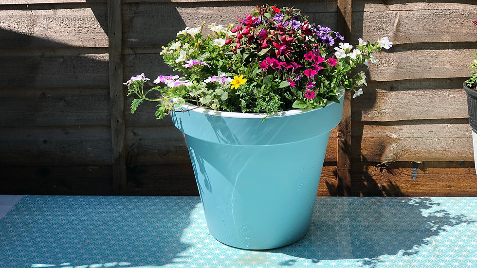 2 x Summer Planted Tub  Patio Container- Light Turquoise