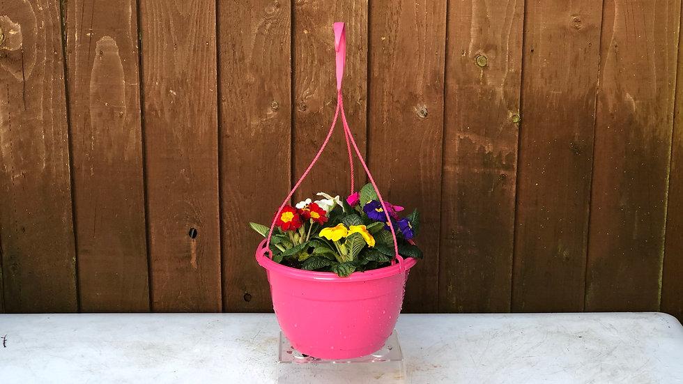"""10"""" Pink Hanging Pot"""