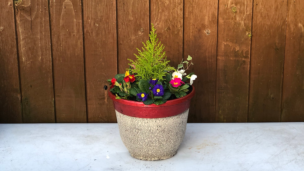 Planted Tub -30cm - Red or Brown