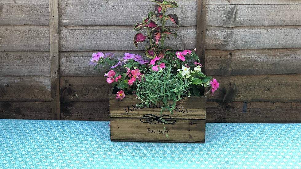 Summer Planted Wooden Crate