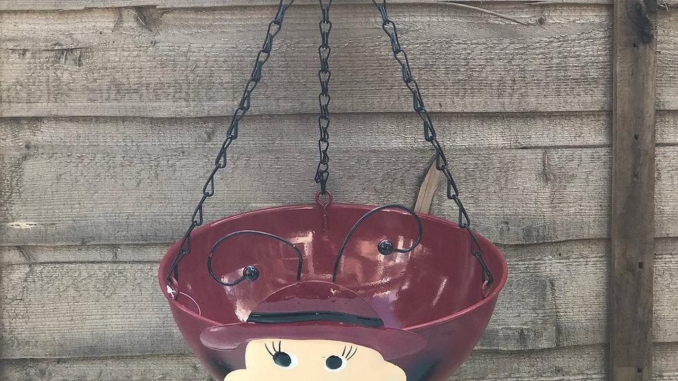 Ladybird - Wobble Head - Hanging Basket