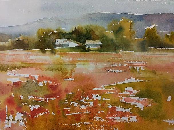Francesc Fontana - Provence, Poppies