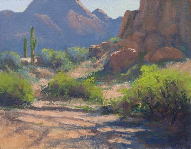 Linda Curtis - Desert Vista