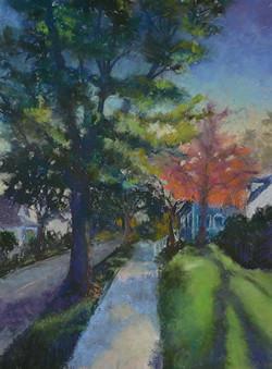 Denise Vitollo - Neighborhood