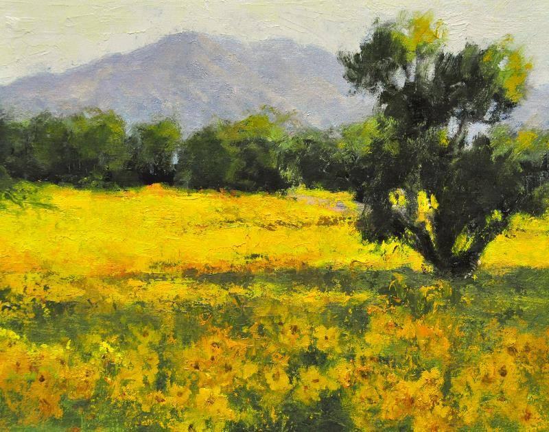 Cheryl St. John - Wild Sunflowers