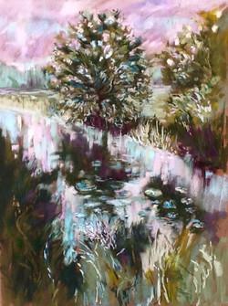 Kerry Nowak - Twilight Water Lilies
