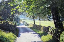David Barber - Gradbatch Lane 2