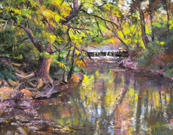 Chris Willey - Autumn Waterfall