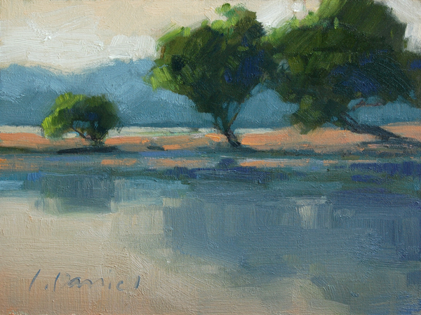 Laurel Daniel - Reflections Blue.jpg