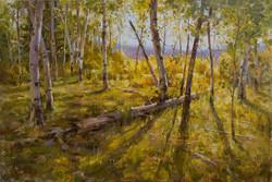 Mitch Baird - Ridge-top Gold