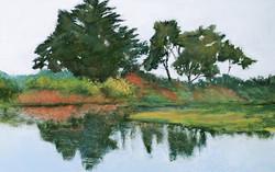 Jacquelyn Blue - Lagoon Reflections