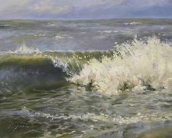 Diane Mannion - Surf Study