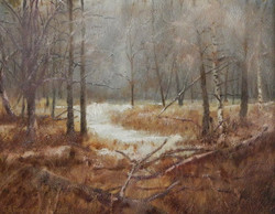 Bruce Foxworthy - Early Snow Squall At Kensington Nature Trail