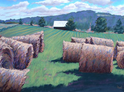 Louise Pond - Beyond the Bales