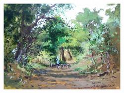 Nikhil Giri - Farm Road