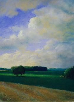 Ron Monsma - Clouds Over an Open Field