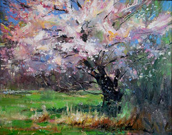 Richard Alan Nichols - Spring Blossoms
