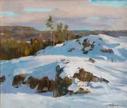 Alexander Zimin - Landscape of Finland