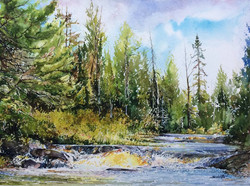 Anthony Saldutto - Algonquin Waterfalls (watercolor)