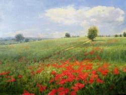 Karen Blackwood - Tuscany, Hillside With Poppies