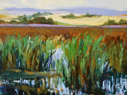 A.S. Helwig - Lloyd Park Slough