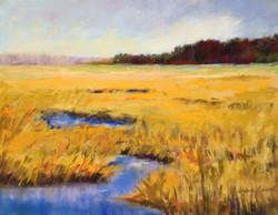 Sherri Cassell - Golden Marshland