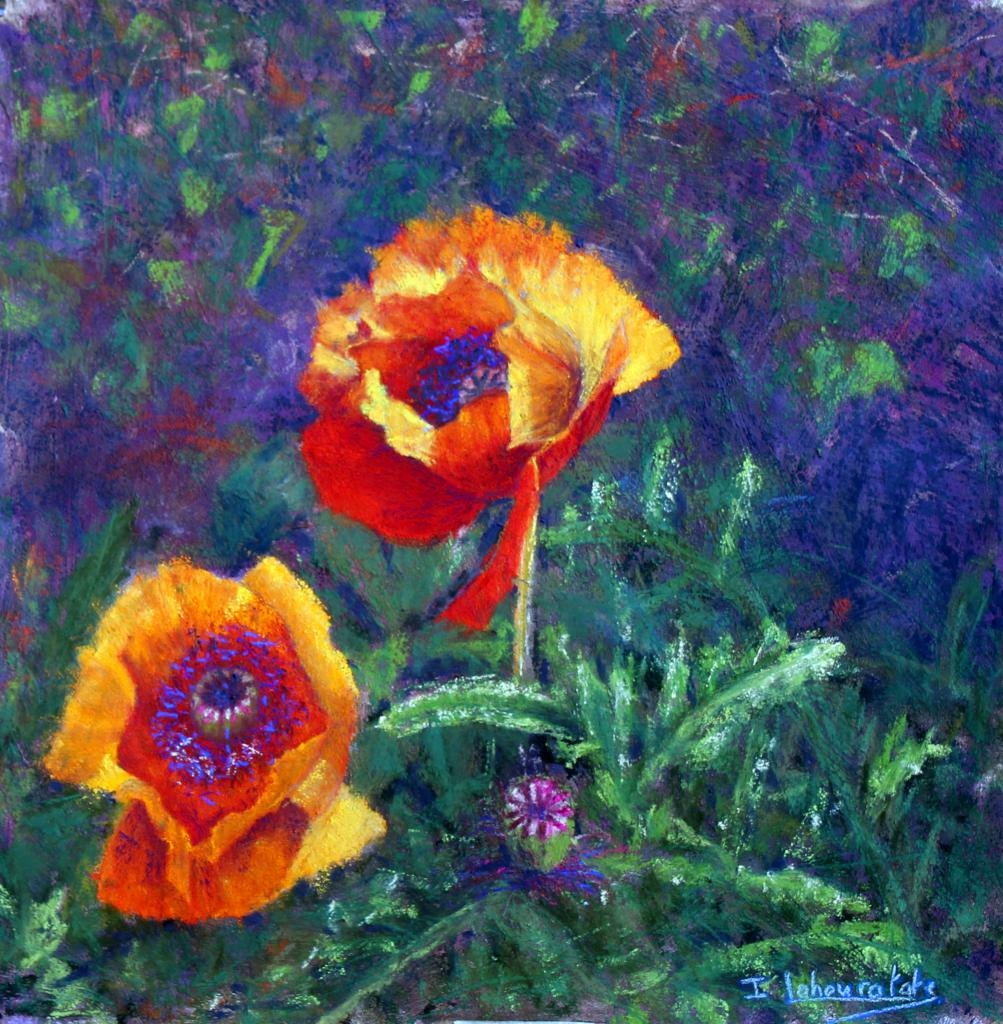 Isabelle Lahouratate - California Poppies