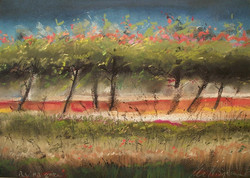 Monika Niżyńska - Blossoming Trees