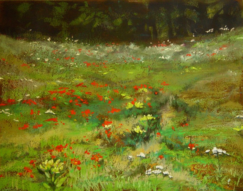 Jude Tolar - Another Riot of Wildflowers