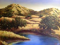 John Nichols - Capay Valley